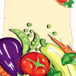 Vegetable — Stock Vector #14481985