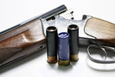 Hunting rifle and ammunition — Stockfoto