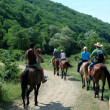 Horse riding in town Plyaho - Yellow Snake Valley. Tuapse district, Krasnodar Krai, Russia. — Stock Photo #13914934