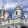 Prince Vladimir Cathedral. St. Petersburg, Russia. — Stock Photo #14746353