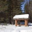 Gazebo in the winter woods — Stock Photo