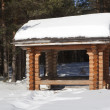 Gazebo in the winter woods — Stock Photo #22858324