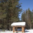 Gazebo in the winter woods — Stock Photo #22858346