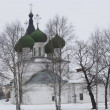 Horn Ensemble - Dormition Monastery, Church of the Assumption of the Blessed Virgin Mary, the city of Vologda, Russia — Stock Photo #26302037
