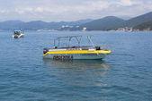 прогулочный катер косаток на побережье черного моря — Стоковое фото