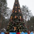 New Year tree in birthplace of Father Frost — Stock Photo #41662925