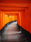 Torii in kyoto — Stock Photo