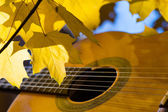 Classical guitar springs and leaves — Stock Photo