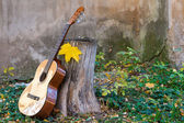 Classical guitar next to old wall — ストック写真