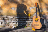 Classical guitar and shadow — ストック写真