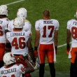 Stock Photo: CanadiFootball League (CFL) Photo