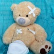 The injured bear — Stock Photo #32194361
