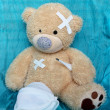 The injured bear — Stock Photo