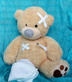 The injured bear — Stock Photo
