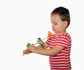 Boy with rose — Stock Photo