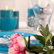 Elegant place settings - Stock Photo