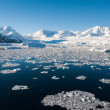 Paradise bay in Antarctica — Stock Photo #13774469