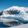 Stock Photo: Paradise bay in Antarctica