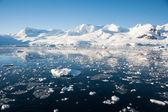 райская бухта в антарктике — Стоковое фото