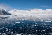 Paradise bay in antarctica — Stockfoto