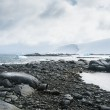 Dramatic landscape in Antarctica, storm is coming — Stock Photo