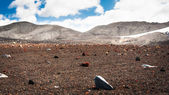 Field of stones in Deception island, Antarctica — Stock Photo