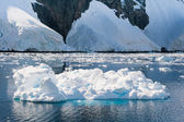 Deffirent forms of icebergs, Antarctica — Photo