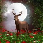 Fairy night — Stock Photo #14443831