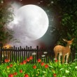 moonlight — Stock Photo #14503363