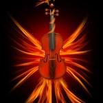 Violin as a firebird, the beauty of music — Stock Photo