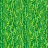 Green grass(vector seamless) — Stock Vector