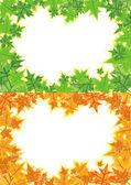 Frame maple leaves — Stock Vector