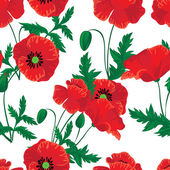 Red poppies seamless — Stock Vector