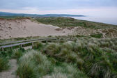 Ynyslas Dunes, West Wales, UK — Stock Photo
