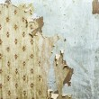 Peeling wallpaper — Stock Photo