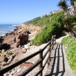 Vleesbaai, Garden Route, South Africa  — Stock Photo