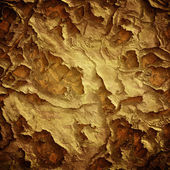 Grunge damaged texture — Stock Photo