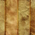 Grunge paper texture. banner set background — Stock Photo