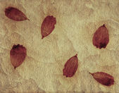 Decorative paper sheet with red leafs — Stockfoto