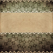 Retro background. Old paper greeting card — Stock Photo