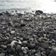 Pan of Rocky Beach — Stock Video