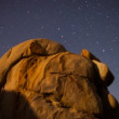 Time Lapse of Joshua Tree Stars and landscape at Night — Stock Video