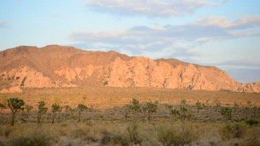 Sunset in the Desert — Stock Video