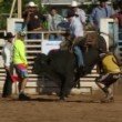 Rodeo Cowboys - Bull Riding in Slow Motion — Stock Video