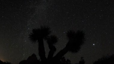 Time Lapse of Stars — Stock Video