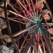Amusement Ride — Stock Video