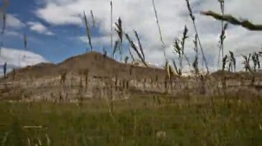 Badlands National Park. Grass Pan — Stock Video