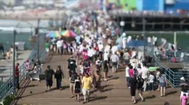 Santa Monica Beach - Tilt Shift, Zoom — Stock Video