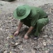 Vietnam Cho Chi Tunnels - Stock Photo