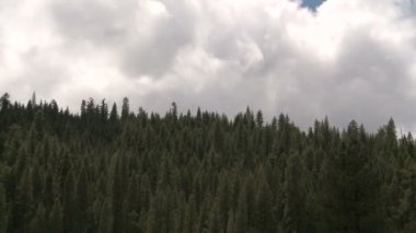 Yosemite Mountain Scene — Stock Video